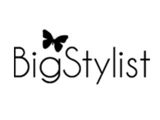Big Stylist Coupons