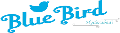 Blue Bird Hyderabadi coupons