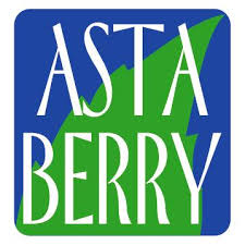 Astaberry Coupons